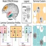 An Indexing Theory for Working Memory Based on Fast Hebbian Plasticity