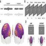 Synchronization of Sensory Gamma Oscillations Promotes Multisensory Communication