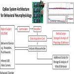 OpBox: Open Source Tools for Simultaneous EEG and EMG Acquisition from Multiple Subjects