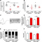 Long-Term Exposure to PFE-360 in the AAV-α-Synuclein Rat Model: Findings and Implications