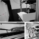 Eye Tracking of Occluded Self-Moved Targets: Role of Haptic Feedback and Hand-Target Dynamics