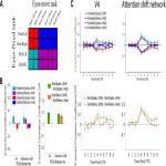 Neural Representations of Covert Attention across Saccades: Comparing Pattern Similarity to Shifting and Holding Attention during Fixation