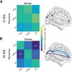 Posttraumatic Stress Disorder Is Associated with α Dysrhythmia across the Visual Cortex and the Default Mode Network