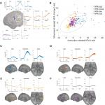 Theta Synchrony Is Increased near Neural Populations That Are Active When Initiating Instructed Movement