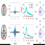 Synchronous Brain Dynamics Establish Brief States of Communality in Distant Neuronal Populations