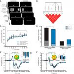 "A Haplotype Associated with Enhanced Mineralocorticoid Receptor Expression Facilitates the Stress-Induced Shift from ""Cognitive"" to ""Habit"" Learning"