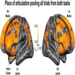 Sensorimotor Representation of Speech Perception. Cross-Decoding of Place of Articulation Features during Selective Attention to Syllables in 7T fMRI