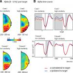 The Role of Alpha Activity in Spatial and Feature-Based Attention