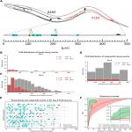 <em>In-Vivo</em> Quantitative Image Analysis of Age-Related Morphological Changes of <em>C. elegans</em> Neurons Reveals a Correlation between Neurite Bending and Novel Neurite Outgrowths