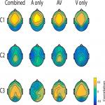 Memorable Audiovisual Narratives Synchronize Sensory and Supramodal Neural Responses