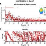 θ-Band Cortical Tracking of the Speech Envelope Shows the Linear Phase Property