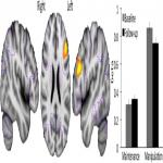 Longitudinal Changes in Component Processes of Working Memory