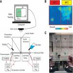 The Operant Plantar Thermal Assay: A Novel Device for Assessing Thermal Pain Tolerance in Mice