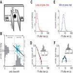 The Memory Trace Supporting Lose-Shift Responding Decays Rapidly after Reward Omission and Is Distinct from Other Learning Mechanisms in Rats