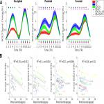 The Role of Location-Context Binding in Nonspatial Visual Working Memory