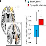 Testosterone Modulates Altered Prefrontal Control of Emotional Actions in Psychopathic Offenders