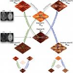 Virtual Connectomic Datasets in Alzheimer's Disease and Aging Using Whole-Brain Network Dynamics Modelling