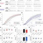 HIV-1 Tat and Morphine Differentially Disrupt Pyramidal Cell Structure and Function and Spatial Learning in Hippocampal Area CA1: Continuous versus Interrupted Morphine Exposure