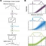 Identification of Multiple Noise Sources Improves Estimation of Neural Responses across Stimulus Conditions