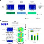 Cortical Measures of Phoneme-Level Speech Encoding Correlate with the Perceived Clarity of Natural Speech
