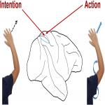 From Intention to Action: Hierarchical Sensorimotor Transformation in the Posterior Parietal Cortex