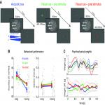 Shared Physiological Correlates of Multisensory and Expectation-Based Facilitation