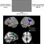 Neural Correlates of Temporal Complexity and Synchrony during Audiovisual Correspondence Detection
