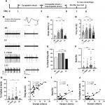 Stress Controllability Modulates Basal Activity of Dopamine Neurons in the Substantia Nigra Compacta