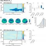 Moment-to-Moment Fluctuations in Neuronal Excitability Bias Subjective Perception Rather than Strategic Decision-Making